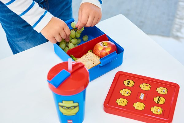 lego lunch set, iconic, to go, share, lunch, healthy, nutrition, household, food, happy